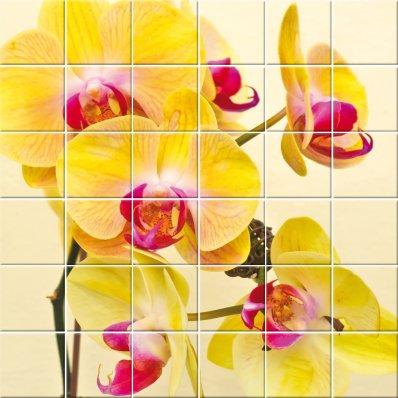Autocolante Azulejo flores