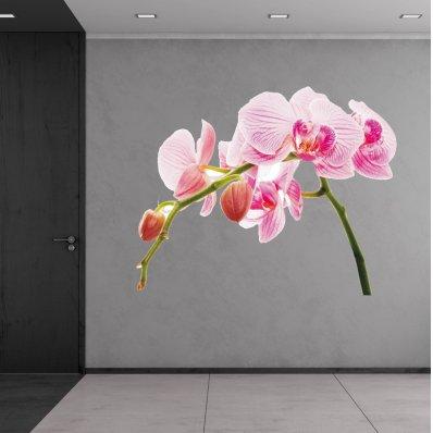 Autocolante decorativo orquídea
