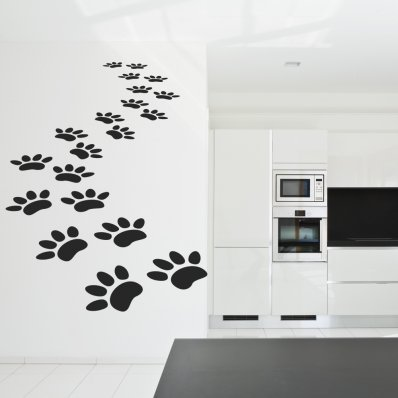 Cat track Wall Stickers