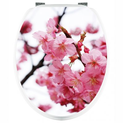 Cherry - Toilet Seat Decal Sticker