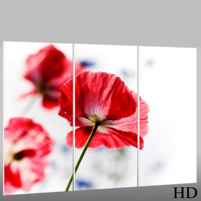 Cuadro Forex floral