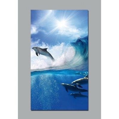 Fotomurales delfín