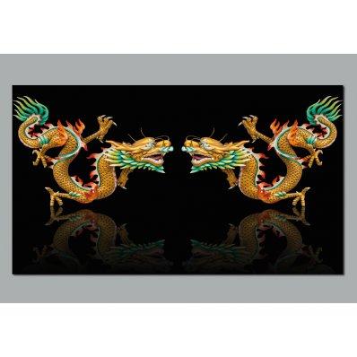 Fotomurales dragóns