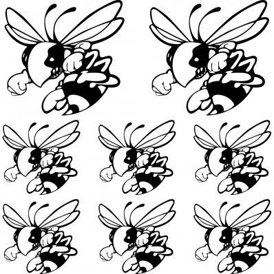 Kit stickers frelon hornet