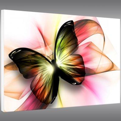Quadro PVC Forex borboleta