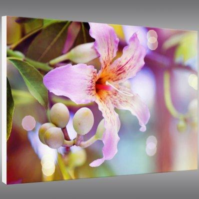 Quadro PVC Forex flores