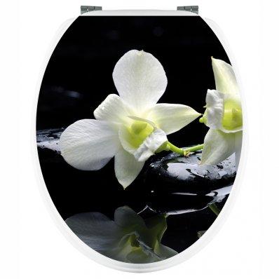 Stickers Orchidée Blanche