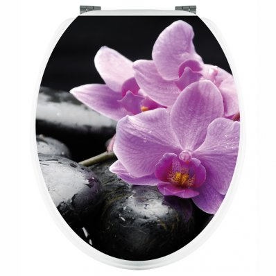 Stickers Orchidée sur Galets