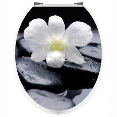 Stickers WC Orchidée sur Galets