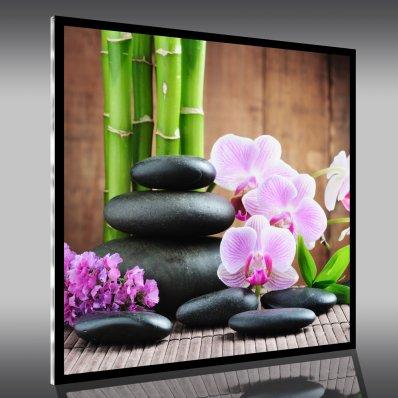 tableaux plexiglass pas cher stickers folies. Black Bedroom Furniture Sets. Home Design Ideas