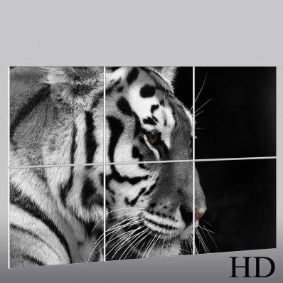 Triptyque Forex Tigre