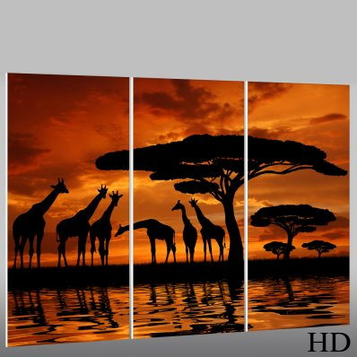 Tryptyk Forex - Afryka