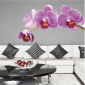 Adesivo Murale orchidea