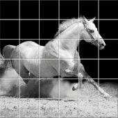 Autocolante Azulejo cavalos