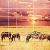 Autocolante Azulejo zebra