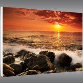 Beach - Forex Print