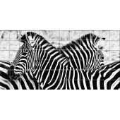 Fliesenaufkleber Zebra