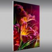 Flower - Forex Print