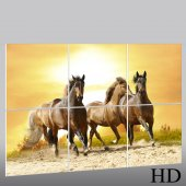 Horses - Triptych Forex Print