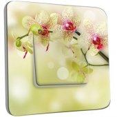 Interrupteur Décoré Poussoir Branche d'Orchidée