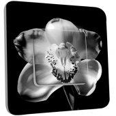 Interrupteur Décoré Simple Fleurs Black&White