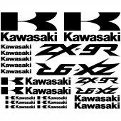 Kawasaki ZX-9r Decal Stickers kit