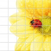 Naklejka na Płytki Ceramiczne - Kwiaty i Biedronka