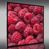 Raspberries - Acrylic Prints