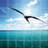 Seagull - Tiles Wall Stickers