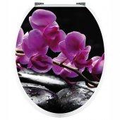 Stickers Branche d'Orchidée