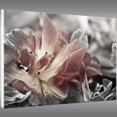 Tableau Forex Fleur