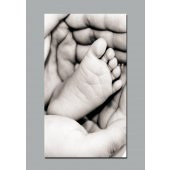 Tenderness Wall Posters