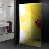 Transparentna Naklejka na Kabiny Prysznicowe Kolor - Kwiat i Biedronka