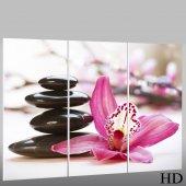 Trittico Forex Zen