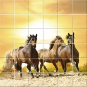 vinilo azulejos caballo