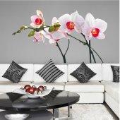 Vinilo decorativo orquídea