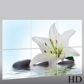Zen - Triptych Forex Print