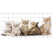 Cat - Tiles Wall Stickers