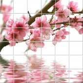 Fliesenaufkleber Blumen