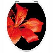 Naklejka na WC - Czerwony Kwiat