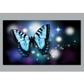 Poster Autocolante borboleta
