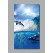 Poster Autocolante golfinho