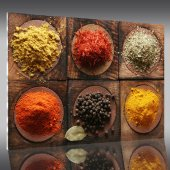 Spices - Acrylic Prints