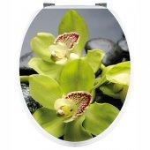 Sticker WC Orhidee