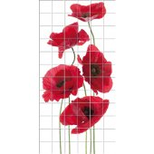 Poppy - Tiles Wall Stickers