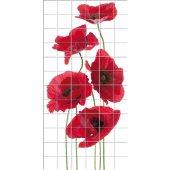 Poppy - Tiles Wall Stickers