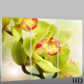 Quadro Triptico PVC orquídea