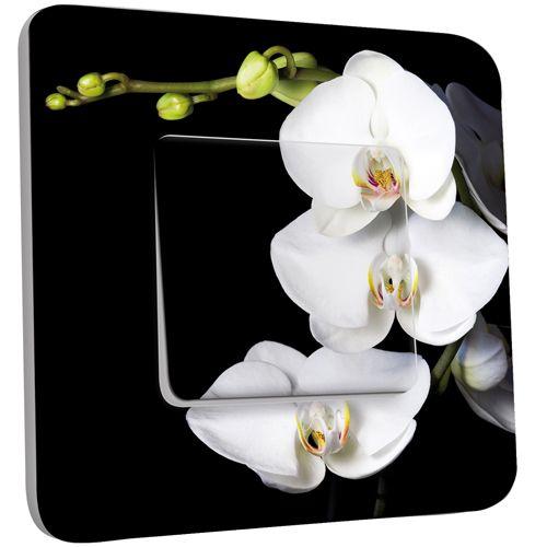interrupteur d cor poussoir orchid es fond noir pas cher. Black Bedroom Furniture Sets. Home Design Ideas