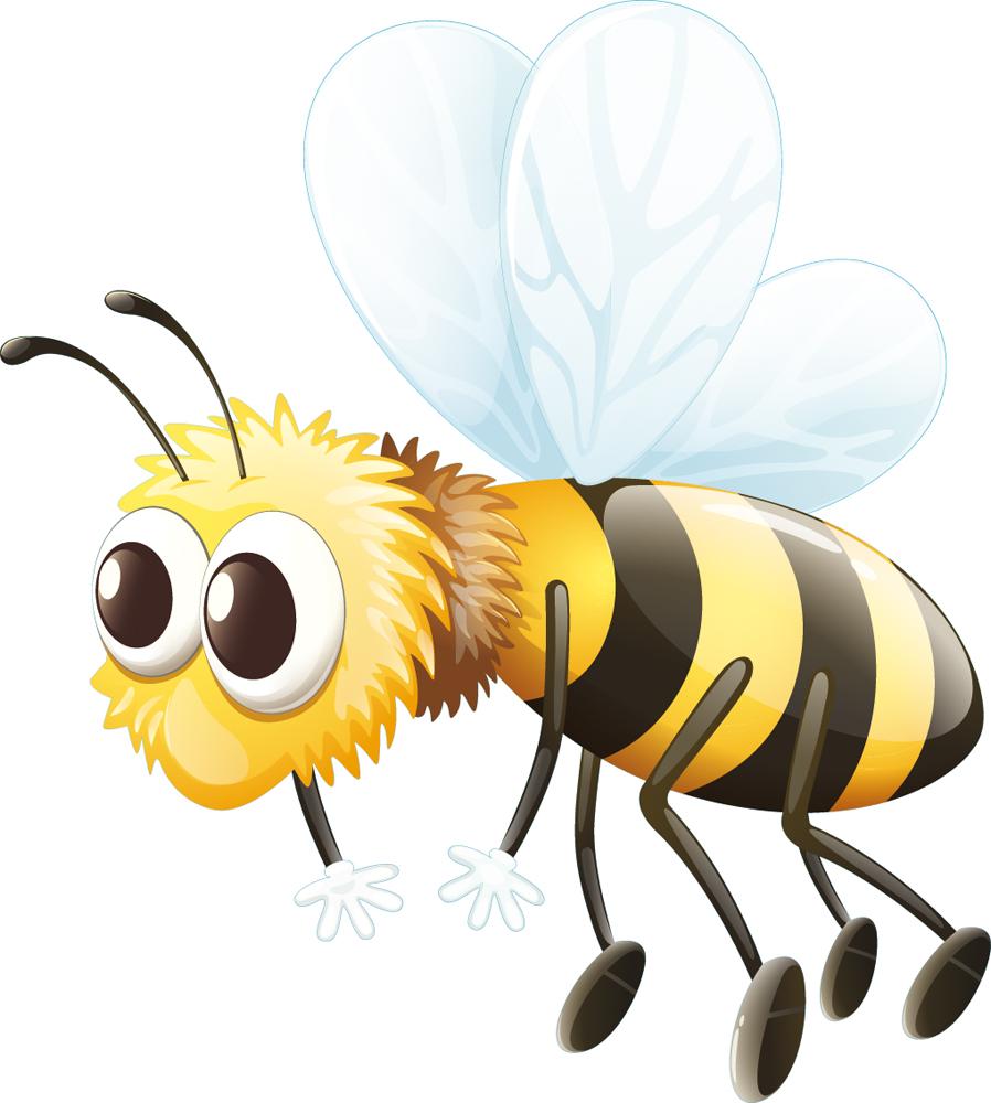 Stickers abeille pas cher for Miroir 90x100