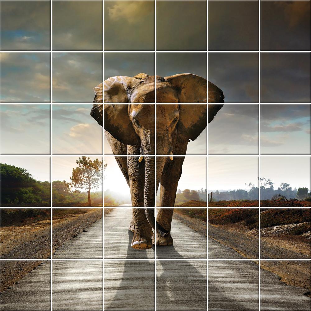 Stickers carrelage éléphant pas cher